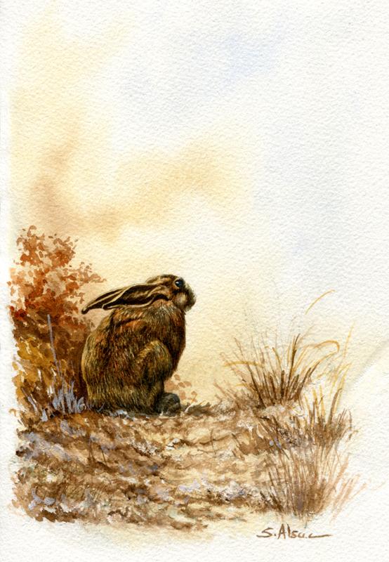 peinture de lièvre