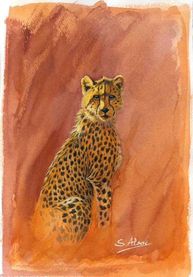 Jeune guepard