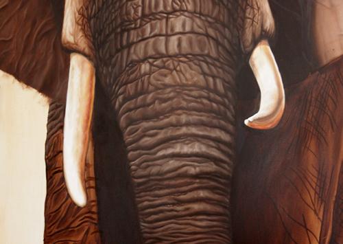 elephant-19-500
