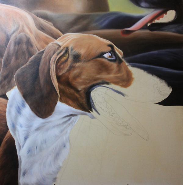 peinture chien courant - dessin preparatif