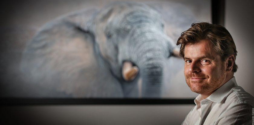 Stephane-Alsac-artiste-peintre-animalier-Wildlife-Artist