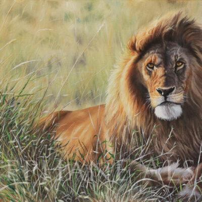 peinture Lion - Sunset Guardian