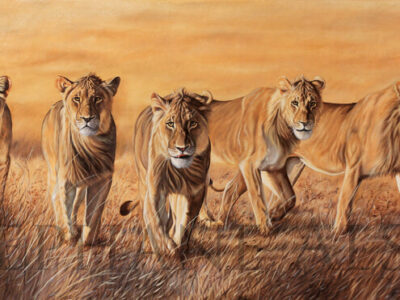 The-Wild-Bunch-peinture-lions-chasse