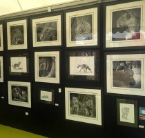 africa-photography-black-and-white-collection-exhibition
