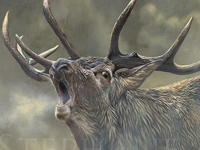 art-peinture-animaux-realiste-contemporaine