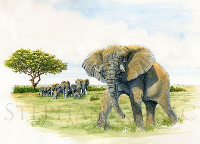 big-daddy-painting-elephant