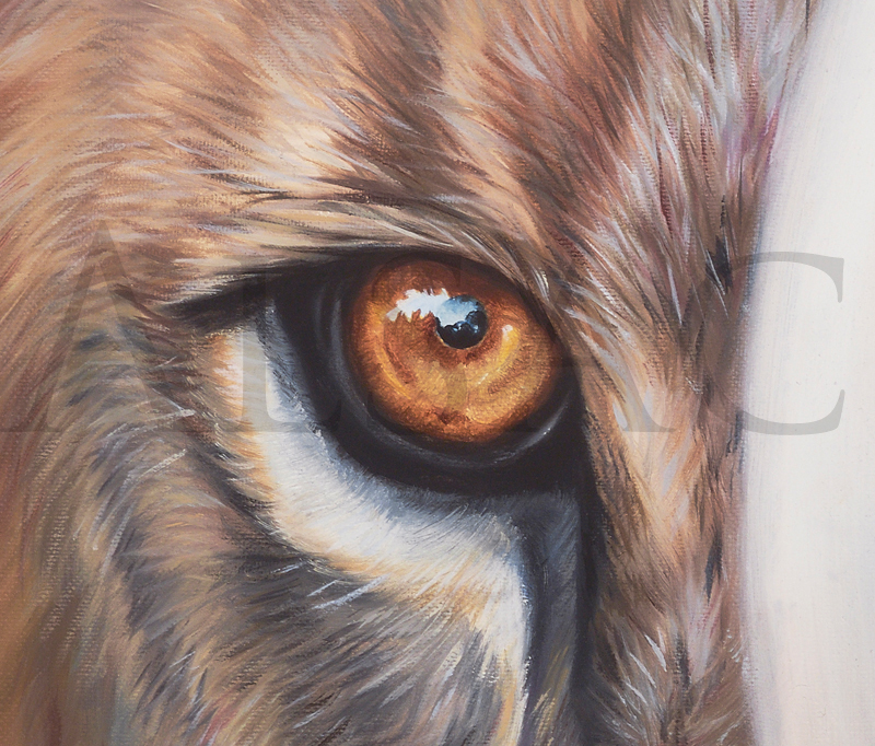 eye-lion-close-up-painting-you-next