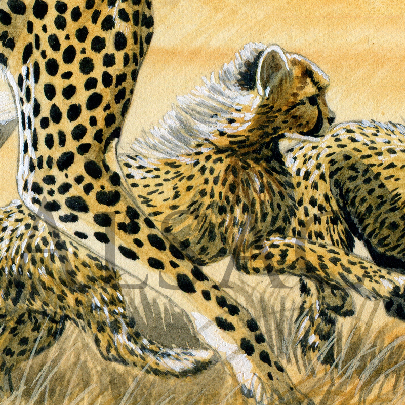 hunting-lessons-painting-cheetahs-detail2