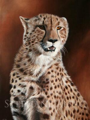 kimbia-peinture-guepard