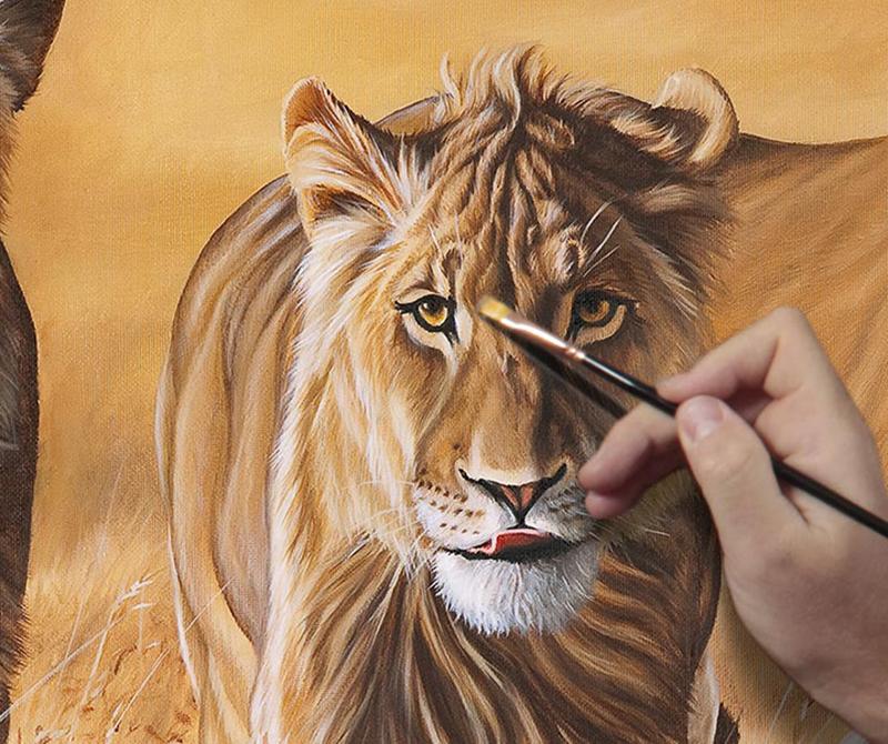 Wildlife Artist Stephane Alsac
