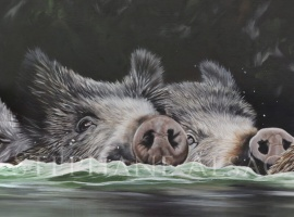 peinture-sanglier-pont-trop-loin-detail