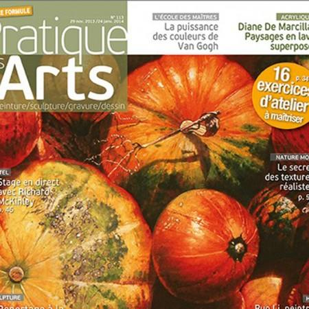 Pratique des Arts N°113