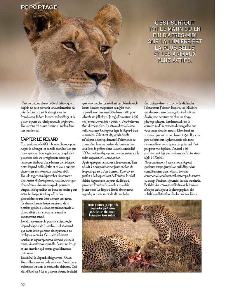 safari-photo-prive-leopard-guide