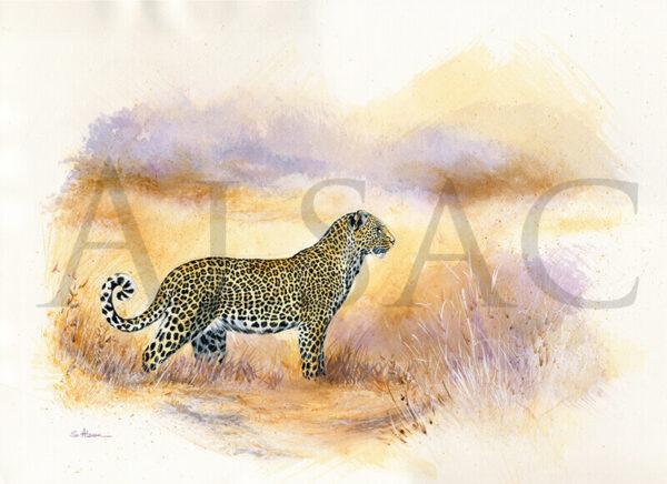 staring-leopard-peinture-aquarelle
