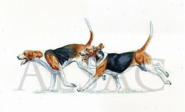 vaul-cy-peinture-chiens-venerie