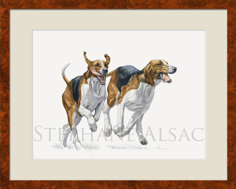 foxhound watercolor painting framed