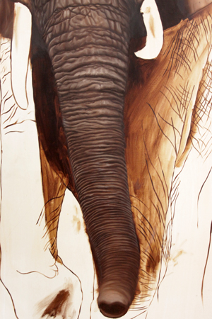 elephant-16-300