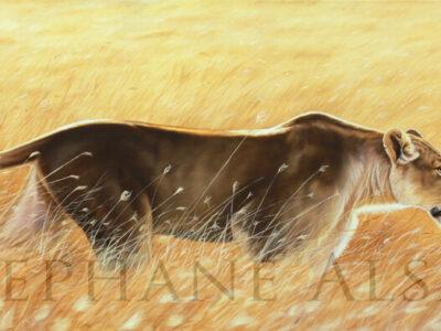Aluna-peinture-lionne-chasse
