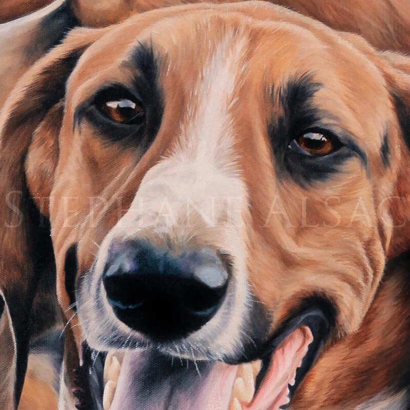 fooxhound painting portrait