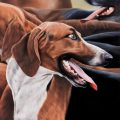 foxhound realistic painting