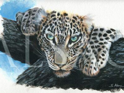 Glance-of-spirit-leopard-yeux-bleus-peinture