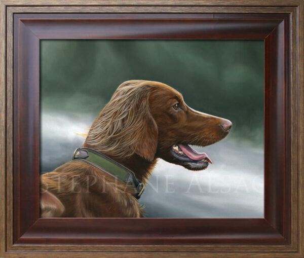 Irish Setter framed