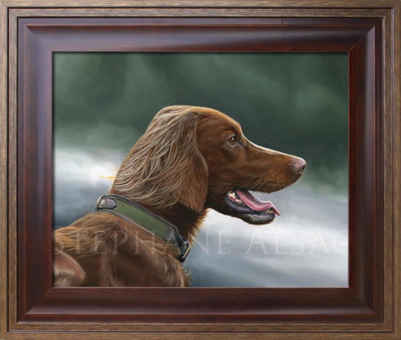 Irish Setter framed