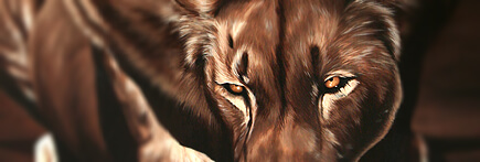 Décoration peinture lionne