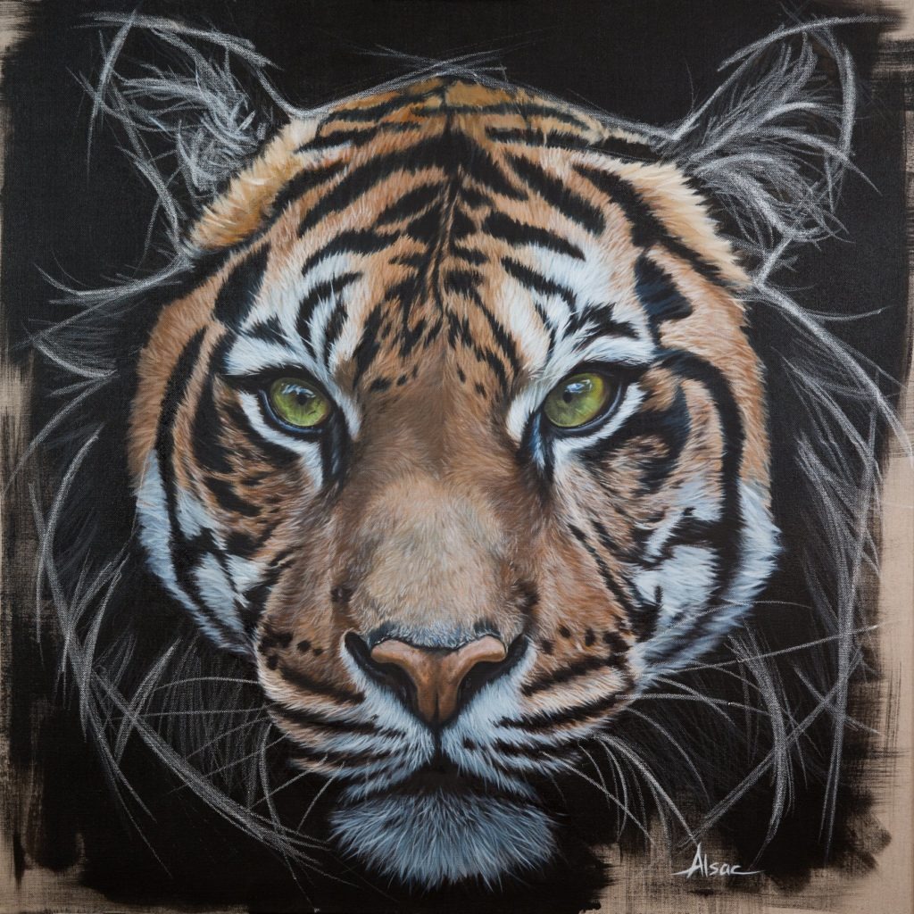 Mon Tigre Est Enfin Fini J Avais Envie De Le Stephane Alsac
