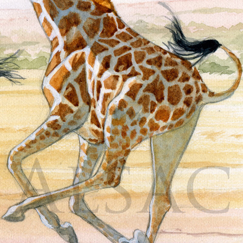 On-the-run-peinture-girafe-detail2