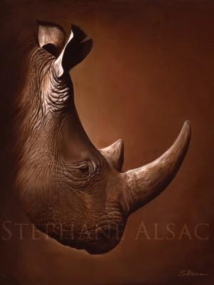 Pembe-peinture-rhino