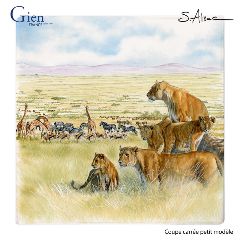 Serengit-coupe-carrée-gien-Safari