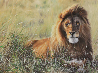 Sunset-Guardian-peinture-lion