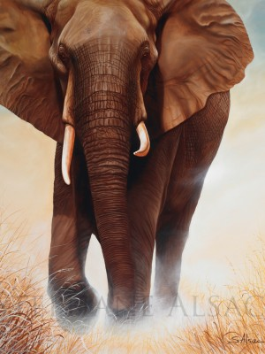 The-big-one-peinture-elephant