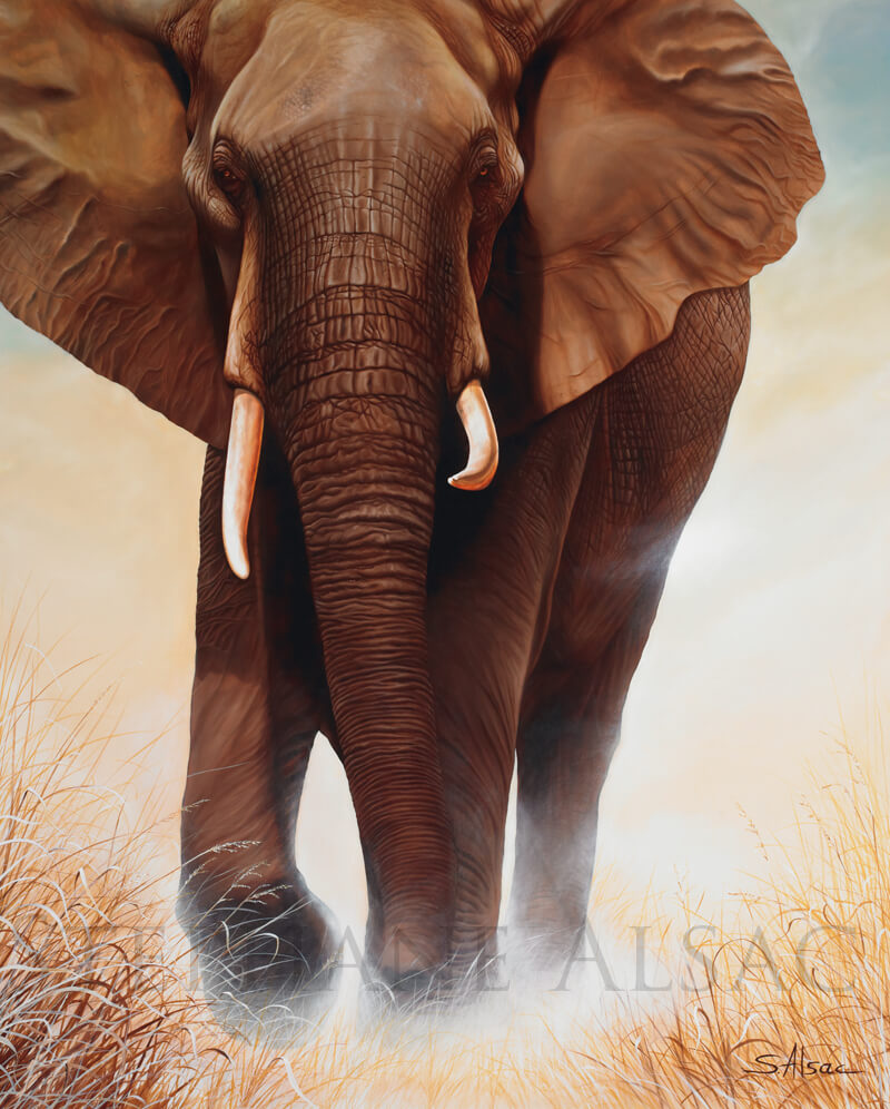 The-big-one-peinture-elephant