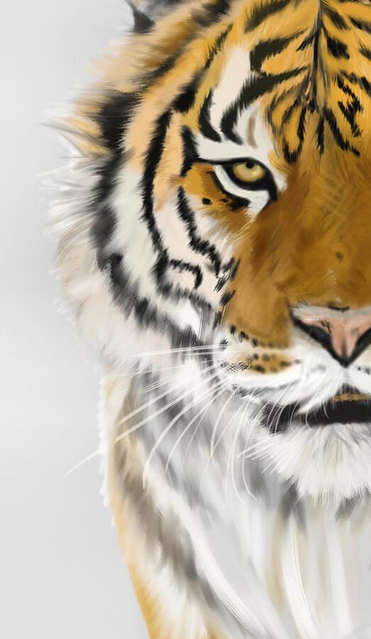 peinture numerique tigre detail