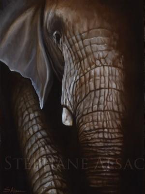 Udongo-peinture-elephant