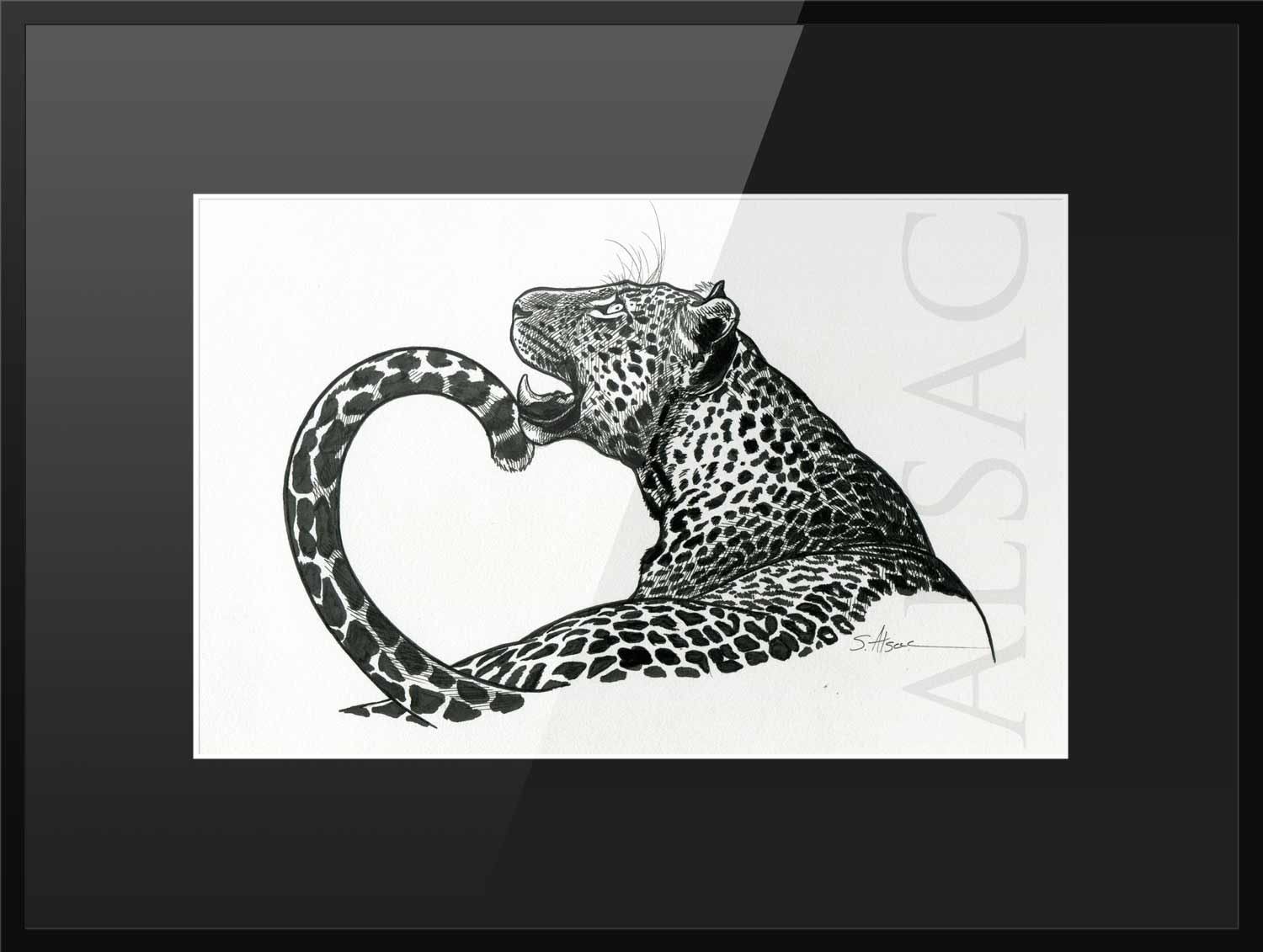 illustration de panthera pardus leopard st phane alsac. Black Bedroom Furniture Sets. Home Design Ideas