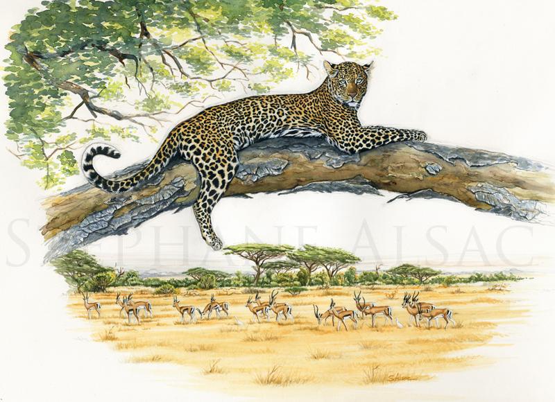 favorite-tree-peinture-leopard
