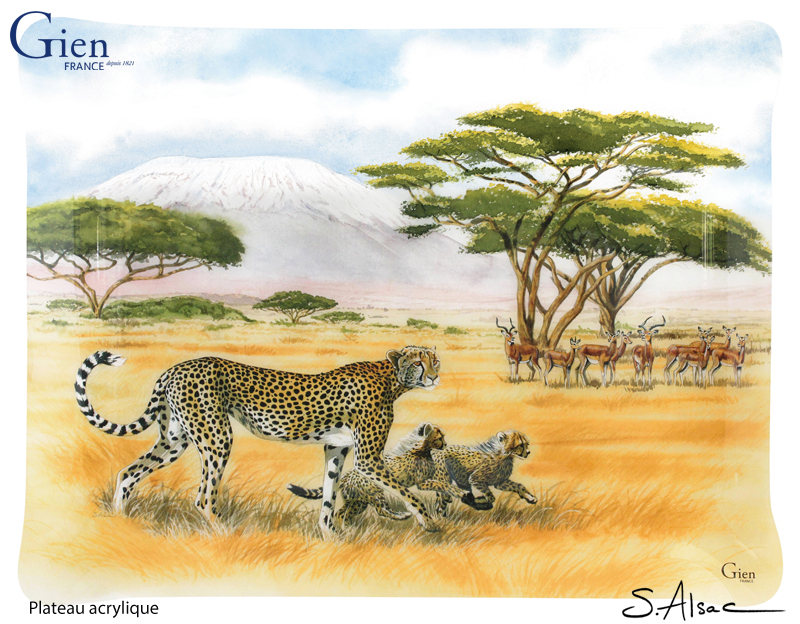 hunting-lessons-gien-plateau-acrylique-safari