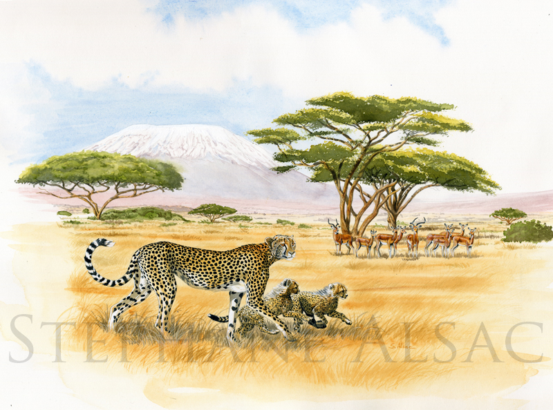 hunting-lessons-peinture-guepard