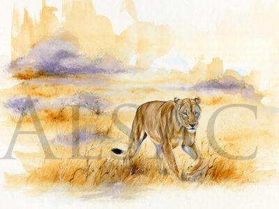 painting-Lioness-on-the-move