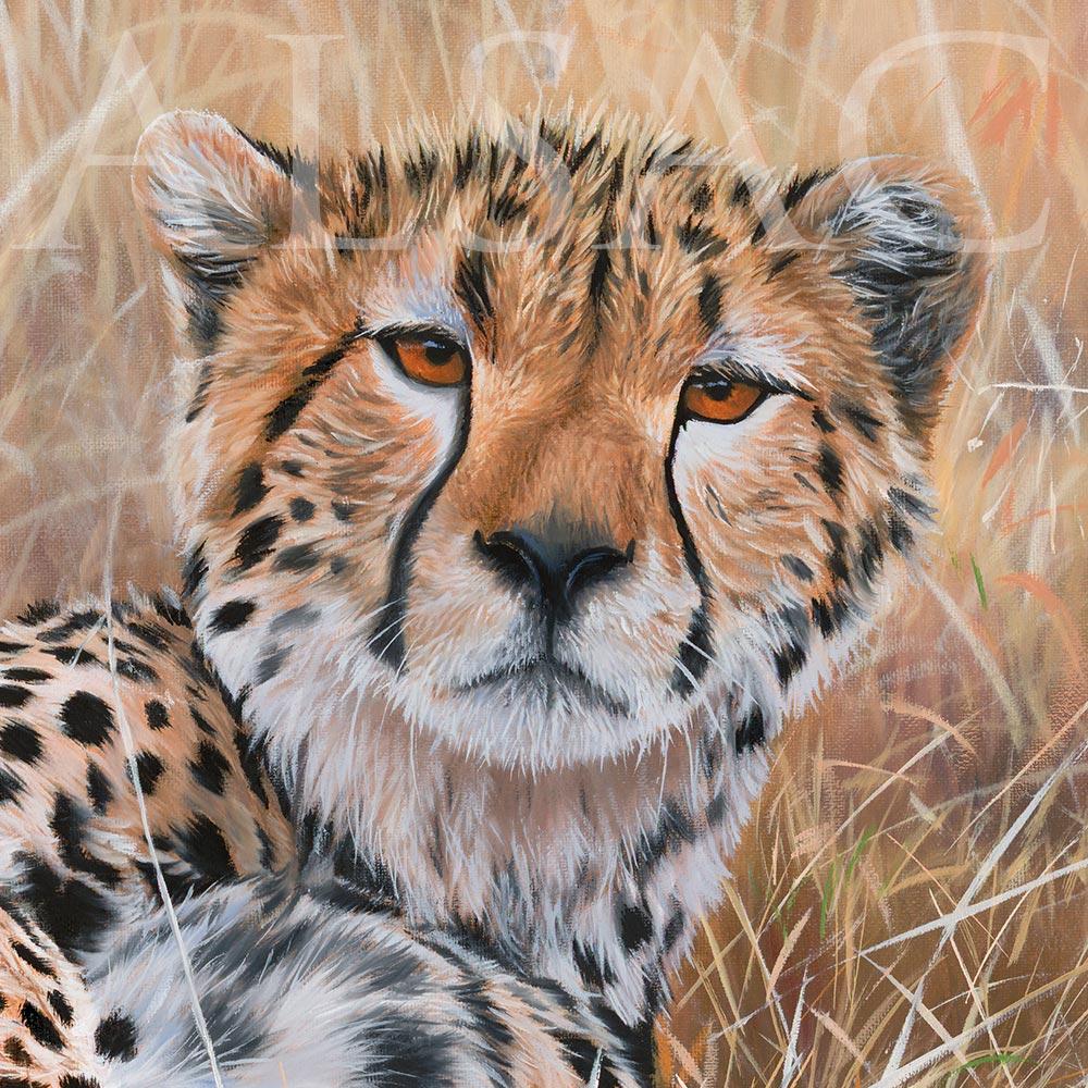 Portrait Peinture Tableau Guepard Realiste Stephane Alsac