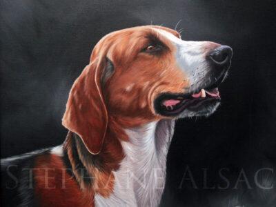 rapprocheur-peinture-chien