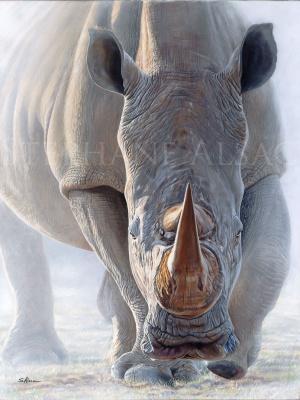 rhino-charge-painting-dust-rage