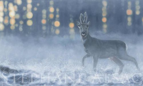 roe-buck-painting-deer-hunting-wildlife-art