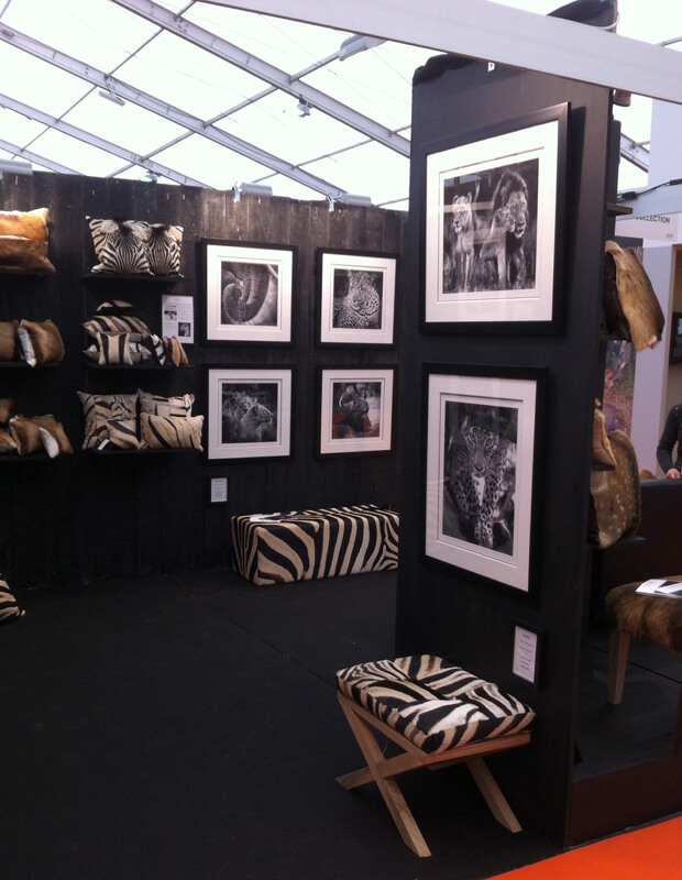 salon-rambouillet-2014-5
