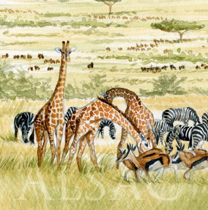 serengit-aquarelle-girafe-serengheti-detail2