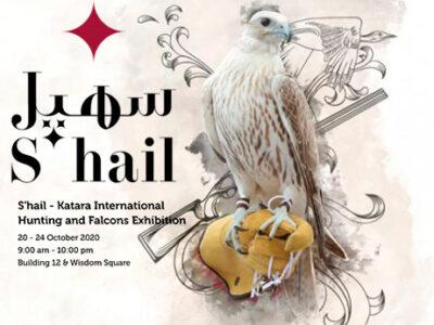 s'hail-katara-hunting-falconry-artist-alsac