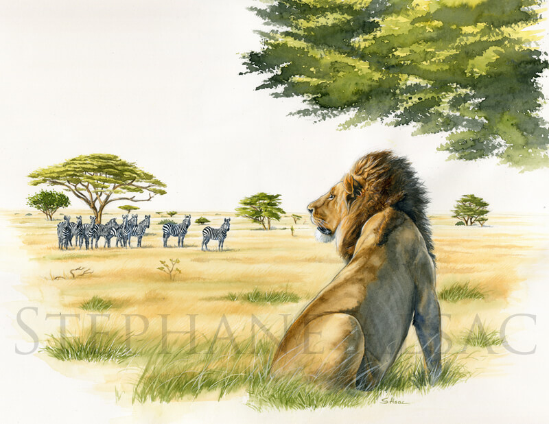 solitary-man-painting-lion